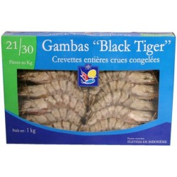 Gambas crues calibre 20/30 pi