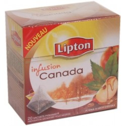 Lipton Pyramid Infusion Canada pomme & sirop d'